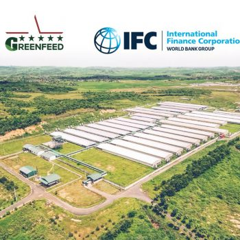 Press release: IFC helps GREENFEED VIETNAM expand sustainable livestock production in Vietnam